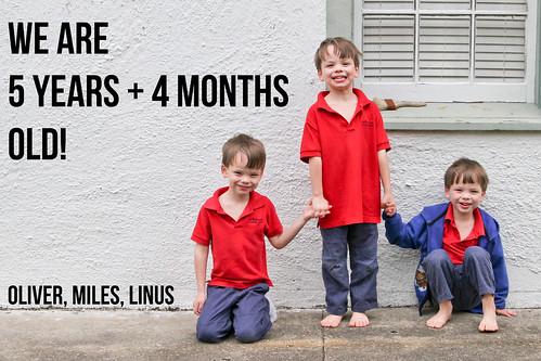 64 months by pyjammy