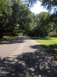 Audubon Park bike ride (solo)