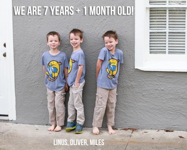 85 months