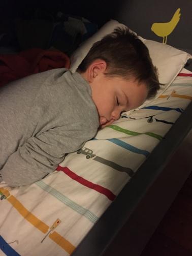 Miles, asleep.