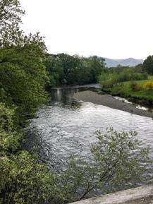 The river under that bridge