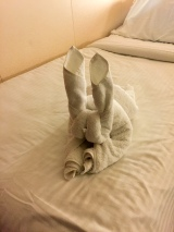 Towel bunny!