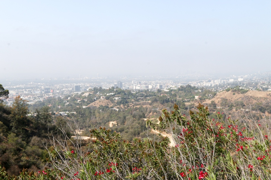 Lovely, if hazy view of Los Angeles