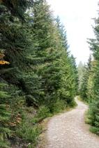 Picturesque path.