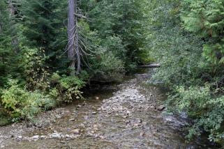 Picturesque stream.