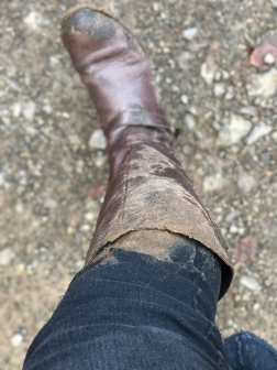 Oops, slipped in the mud!