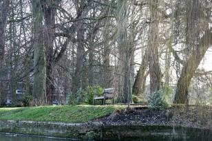 A nice bench.