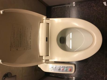 Fancy toilets errywhere!